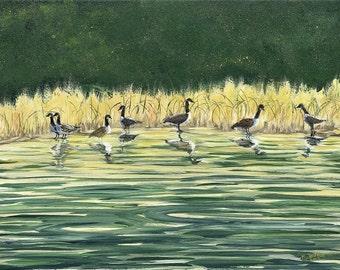 Geese at School Lake