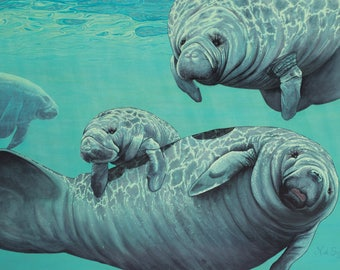 Original Acrylic Manatee Painting Entitled Afternoon Delight