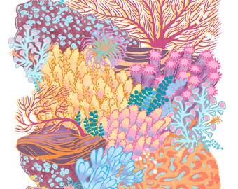 Coral Reef art - 9x12 print - ocean marine art gift