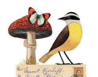 Bird No.28