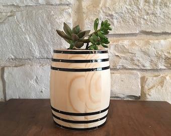 Succulent in a barrel