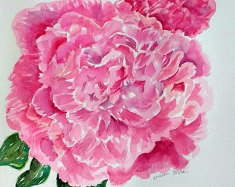 Peony original watercolor painting, 10 x 10 flower art, Peony watercolor art, peony painting SharonFosterArt, watercolor flowers peonies