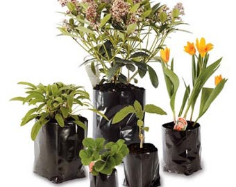 10 Pack of Poly Pots Strong Grow Bag Containers - Many Sizes - Polypots - Plastic Plant Pot