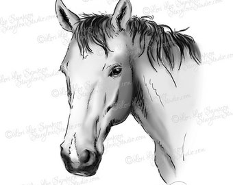 Horse Digital Clip Art, Digital Stamp Digital Download: Drawing Sketch illustration, Scrapbooking Clipart, Crafts, DigiStamp, Pets
