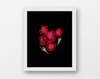 Red rose photo, rose photo, flower photo, red, floral art photo, romantic gift, gift for her, minimalist flower photography, nature photo