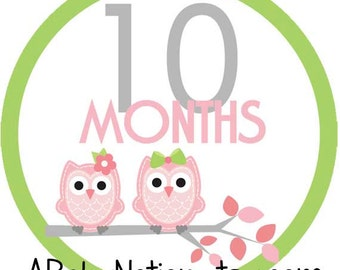 Pink & lime owls - 011 - Circle owl monthly iron on or sticker decal transfer pink lime green baby girl shower nursery
