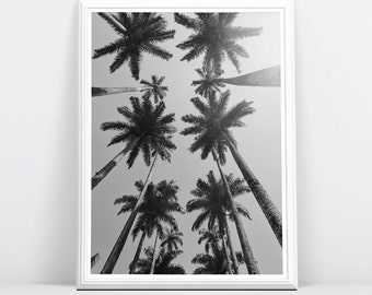 Palm Photography, Palm Tree Wall Art, Black and White Photography, Black and White Palm Tree Art, Palm Tree Decor, Monochrome Print