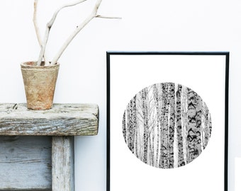 Tree Photography, Printable Art, Abstract Photo, Minimalist, Birch Trees, Wall Art, Wall Decor, Instant download, Large wall Print