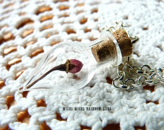 ON SALE! Beauty and the Beast Real Rose Dried Glass Vial Necklace or Earrings - Gift box included