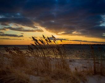 Beach Grass Blue and Gold Sunset at Jones Beach West End