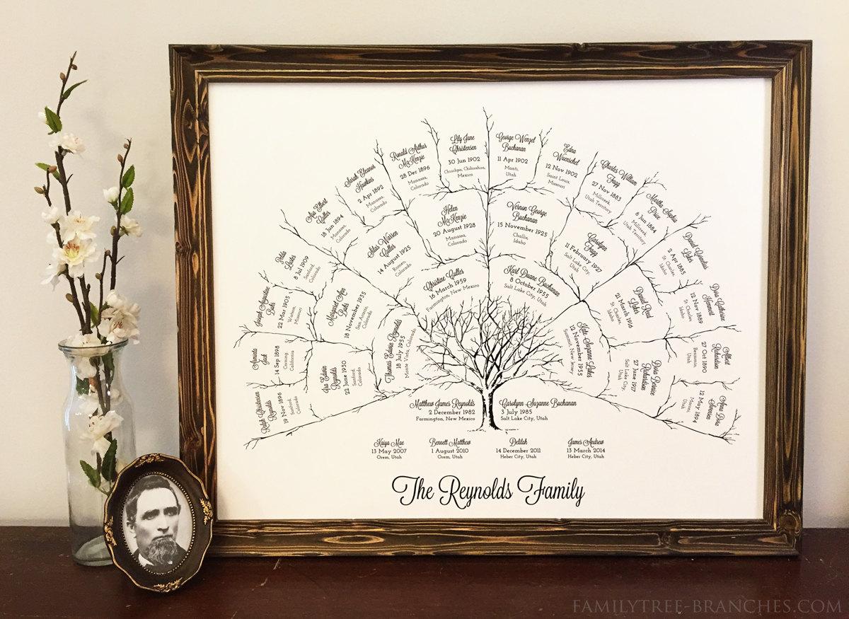 ancestor  u0026 genealogy family tree fan chart 4 generations