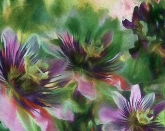 Passion Flowers II, Purple Flowers, Tropical  Flowers, Purple Art, Botanical, Floral, Fine Art Print Matted and Unmatted