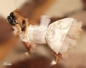Dress  for dogs -- Blanca
