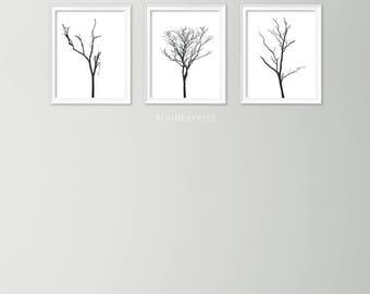 Set of 3 tree branch art - Monochrome botanical art - Botanical art set - Black and white art prints - Minimalist decor - Tree posters