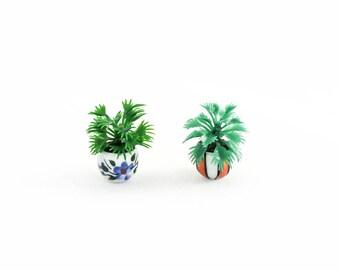 Palm Fern in Cute Pot