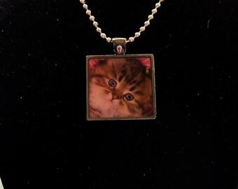 Sentimental Kitty Ball Chain Necklace Pendant