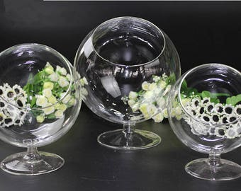 Clear Terrarium Glass with Slant Cup and Stem,Plant Terrarium/Stemmed Orb On Stand Air Plant Holder,Indoor Gardens