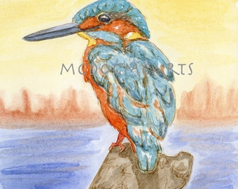 Kingfisher- watercolor and ink