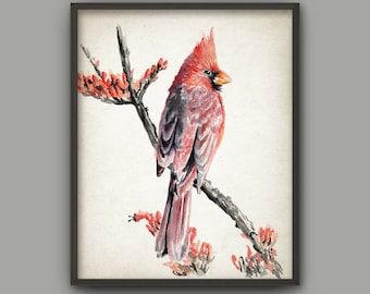Cardinal Bird Watercolor Art Print, Common Cardinal Bird Painting, Redbird, Northern Cardinal Bird Art, Crimson Red Songbird B790