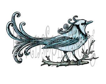 Winter bluebird digital stamp