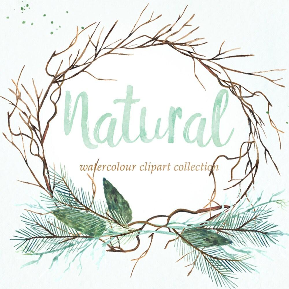 Wedding Tree Watercolor Clipart: Natural Winter Forest PINE Watercolor Clipart Winter
