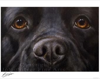 Black Labrador Dog Portrait by award winning artist JOHN SILVER. Personally signed A4 or A3 size Print. BL006SP