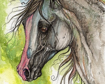 Piber polish arabian horse watercolor painting