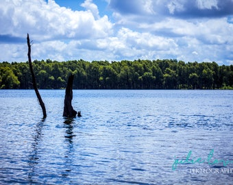 Serene Tolerance  - River, Wall Art, Art Photography, Outdoors, Color, Home Decor, Fine Art, Lost, History, The South