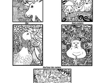 NEW product * drawing Relaxation * Pocket Quebec animals part 1.5 goose, moose, polar bear, raccoon and OWL designs