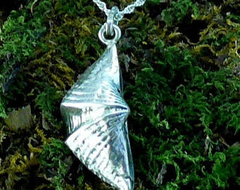 Sea Shell Pendant Sterling Silver