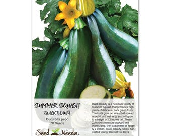 Squash Seeds, Black Beauty Zucchini (Cucurbita pepo) Non-GMO Seeds by Seed Needs