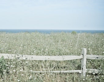 Along The Fence:  Nantucket print on bamboo wood panel