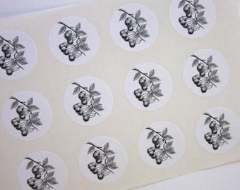 Cherry Stickers One Inch Round Seals