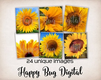 Sunflowers Digital Collage Sheet  - Scrabble Sizes for Tile Pendants - INSTANT DOWNLOAD