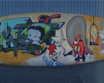 Looney Toons STREET ART panorama