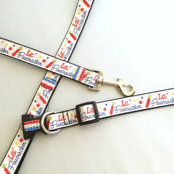 Bling Lil Firecracker~ Patriotic 4th of July Red White & Blue Crystal Rhinestone Dog Pet Collar Leash Lead Set USA!