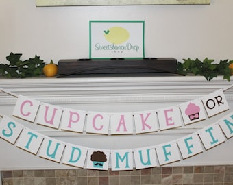 Gender Reveal Banner Cupcake or Stud Muffin Banner - Pink or Blue - Boy or Girl - What's in the Oven?