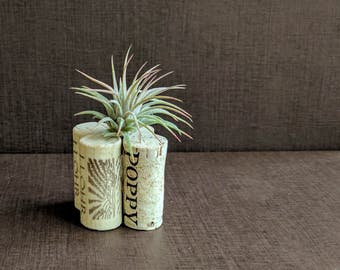 Cork Air Plant Holder for the Wine Lover