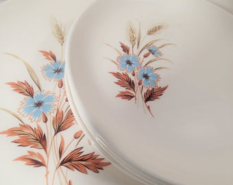Mid Century dinnerware Taylor Smith Taylor Versatile 1960's Blue Bachelor Button Flowers & brown wheat, Vintage dishes