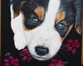 Custom pet portrait English Shepherd Puppy scratchart print -Tuffy