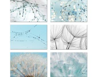 Photographs dandelion sky drops - lightness - zen harmony nature macor pictures set