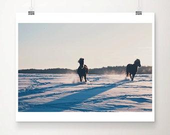 horse photograph snow photograph winter photograph horses in snow print animal photograph horse art pony photograph pony print