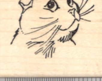 Scottish Fold Kitty Portrait Rubber Stamp, Cat Face  D18105 WM