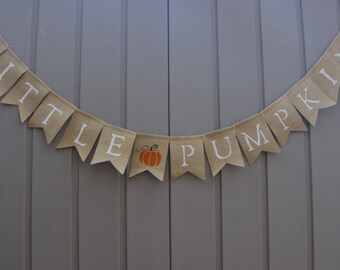 Little Pumpkin Banner, Little Pumpkin Birthday Banner, Little Pumpkin Baby Shower, Fall Baby Shower, Fall 1st Birthday, Little Pumpkin Sign
