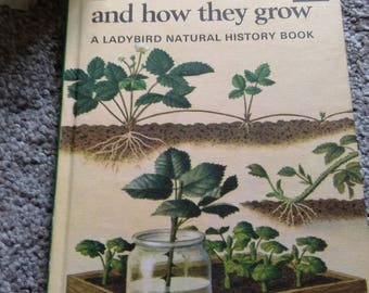 Vintage Children's  Ladybird Book - Plants And How They Grow.    1965