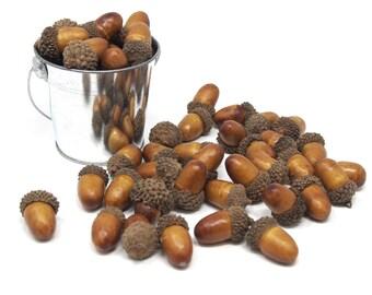 Artificial Decorative Acorns Fall Harvest, 1-1/4-Inch