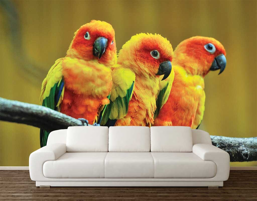 Parrots Wall Decal Wallpaper Animals Vinyl Peel And Stick
