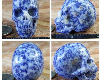 "2.0"" Sodalite Skull 3.1oz 88.0g Realistic Hand Carved Handmade Crystal Healing Metaphysical Magick Reiki Wicca Blue Altar Shrine SK897"