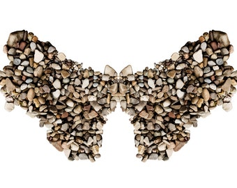 Stone Butterfly - Original Photograph