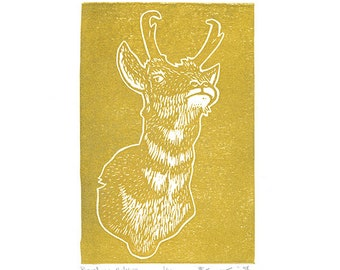 "Pronghorn Antelope (Gold) - Linocut Print - 4x6"" - Limited Edition"